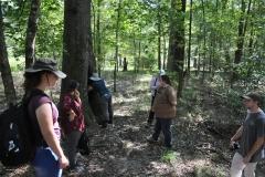 Tree Roost Visit